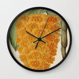 Dendrobium Densiflorum Vintage Botanical Floral Flower Plant Scientific Illustration Wall Clock