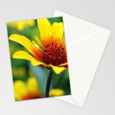 Prairie Flower II Stationery Cards