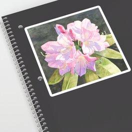 Pink Rhododendron Sticker