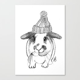 Winter bunny Canvas Print