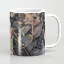 Poison Garden Coffee Mug