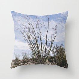Palm Springs Ocotillo Throw Pillow