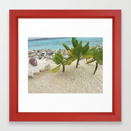Ocean Photography Framed Art Print