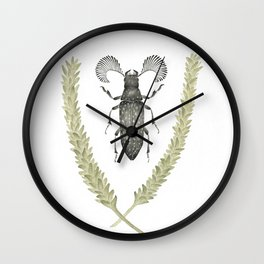 Feather Horned Beetle of Australia Wall Clock