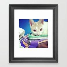 Majestic Kitty Framed Art Print