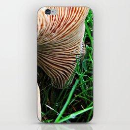 Mushroom and Dewdrops iPhone Skin