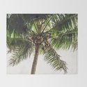 Coconut Bounty by cascadia