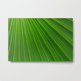 Leaves Abstract Background Metal Print