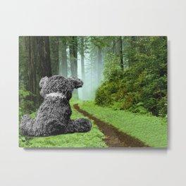 Teddy Bear Left Behind Metal Print