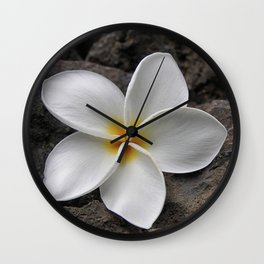 Delicate Induration Wall Clock