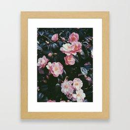 camelia London Framed Art Print
