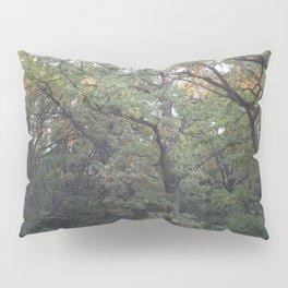 TREES. AUTUMN. OAKS Pillow Sham