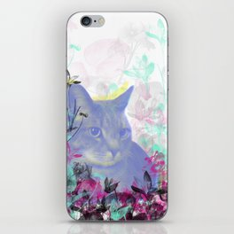 Lazy Kitty iPhone Skin