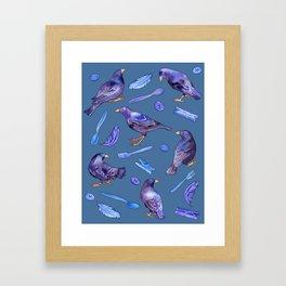 Bower Birds Framed Art Print