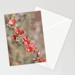 Red Lipstick Stationery Cards