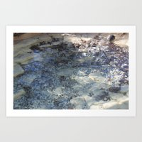 Chlorine-Washed Leaves Art Print