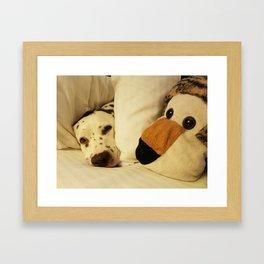 Dalmatian Tiger Nap Framed Art Print