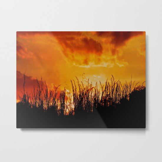 As the Day Fades Metal Print