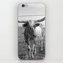 Longhorn Cows iPhone Skin