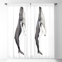 Humpback whale for whale lovers Blackout Curtain