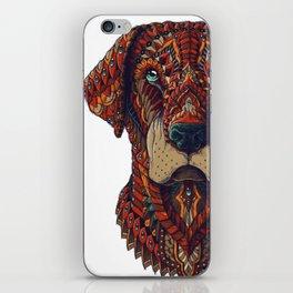 Labrador (Color Version) iPhone Skin