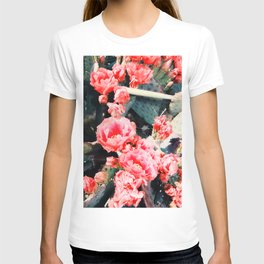 closeup blooming red cactus flower texture background T-shirt