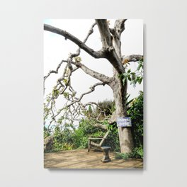 Secret Garden - tall side view Metal Print