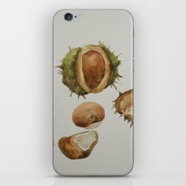Spiky conkers iPhone Skin