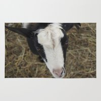 goat Area & Throw Rugs featuring Goat by JCalls Photography