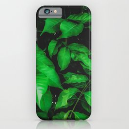 green leaves texture background iPhone Case