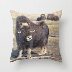 Arctic Muskox Throw Pillow
