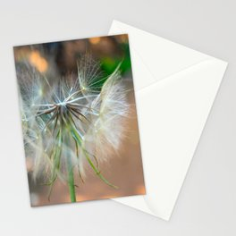 Wishes on Wishes  Stationery Cards