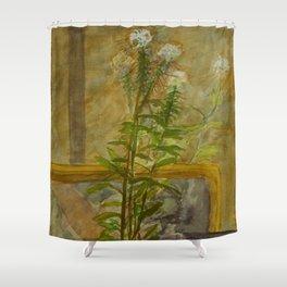 Lean Against a Mirror Shower Curtain