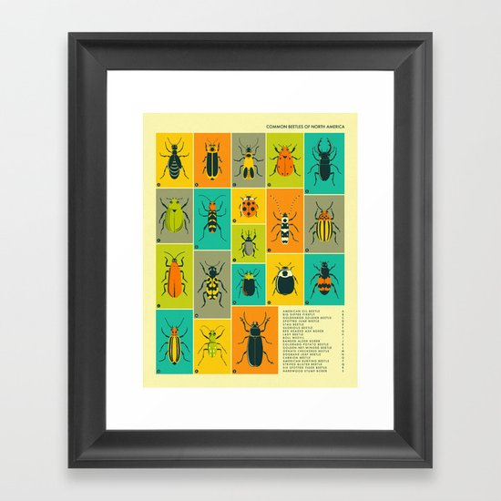 COMMON BEETLES OF NORTH AMERICA Framed Art Print