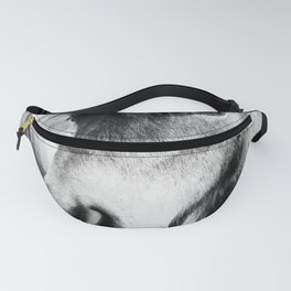 Almo and Billy Bear Fanny Pack
