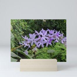 Lavender Stars Mini Art Print