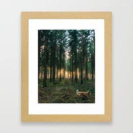 Sav In The Morning Framed Art Print