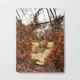 Centennial Garden - Middle Park, Bettendorf, Iowa - Winter 2017 Metal Print