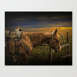 Saddle Horse on the Prairie Canvas Print