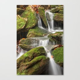Mossy Rohrbaugh Waterfall Canvas Print