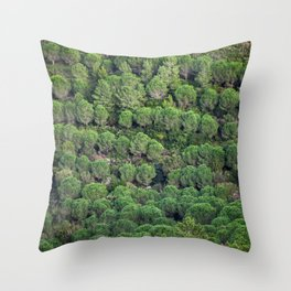 Young pine forest 6809 Throw Pillow
