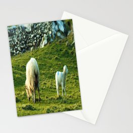 What's Over Here Stationery Cards