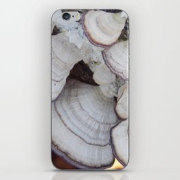 Purple and White  Bracket Fungus iPhone Skin