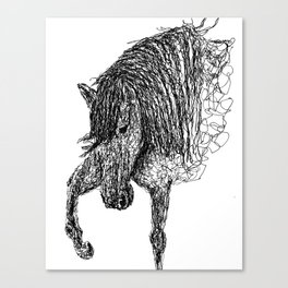 Unbridled Lines Canvas Print