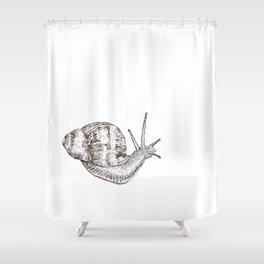 Formulate a Plot Shower Curtain