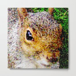 The many faces of Squirrel 3 Metal Print
