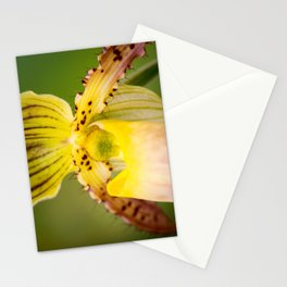 Yellow Lady Stationery Cards