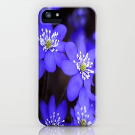 First Spring Flowers in Forest iPhone Case