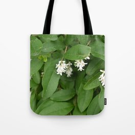 Stars of Nature Tote Bag