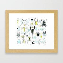 Moth, Beetle, and Bug Framed Art Print